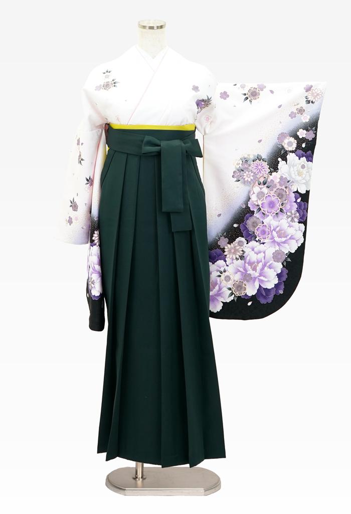 【着物】白地紫雪輪花+【袴】フカミドリ