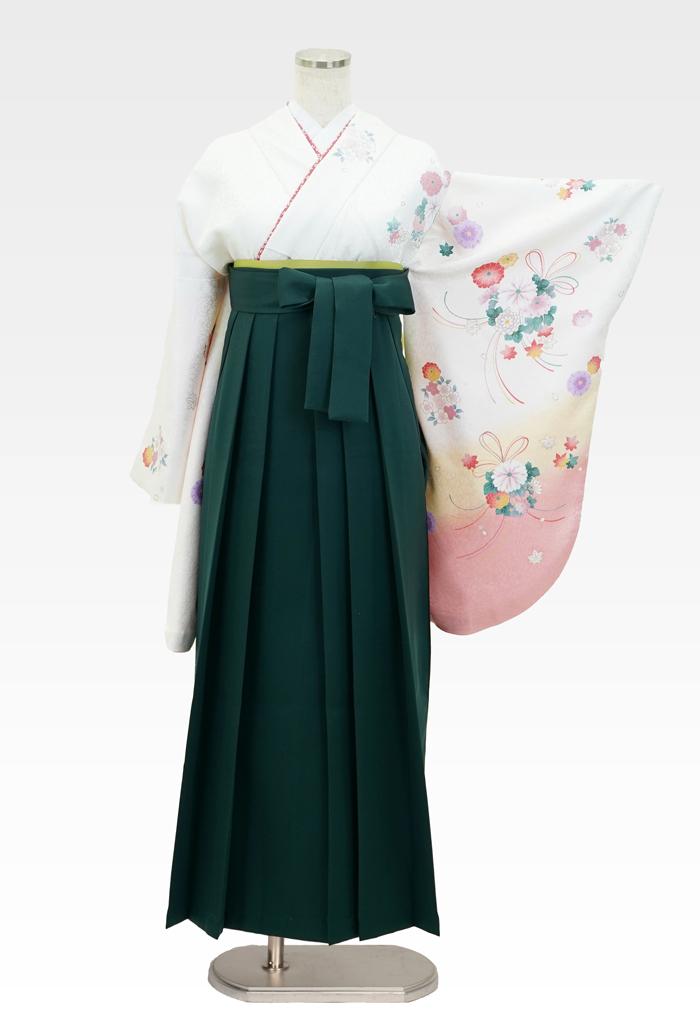 【着物】白地に束ね菊サクラ+【袴】フカミドリ